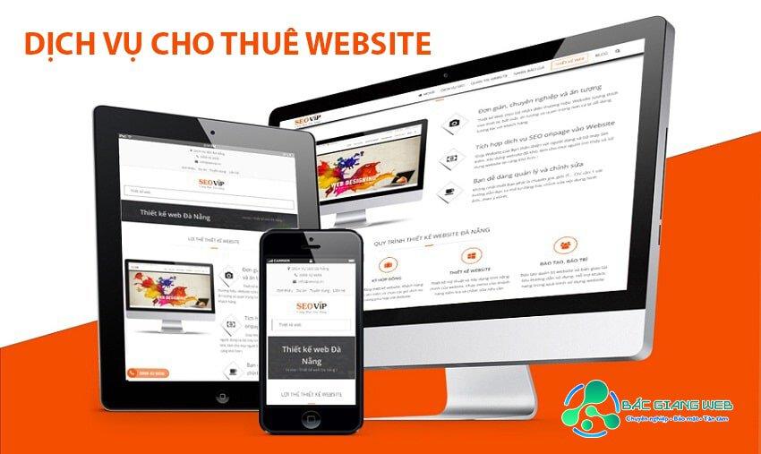 Dịch vụ cho thuê website